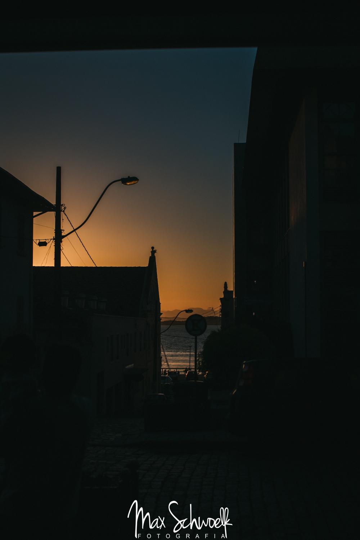 MAX_5209